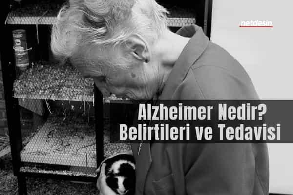Alzheimer-nedir