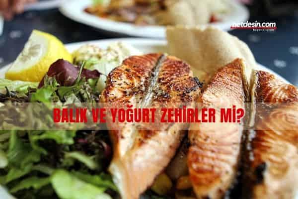 balik-ve-yogurt-zehirler-mi