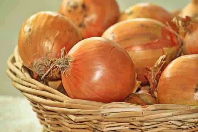 Saç için soğan suyu. Soğan suyunun saça faydaları (10)