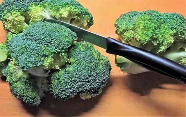 brokoli-tok-tutan-besinler