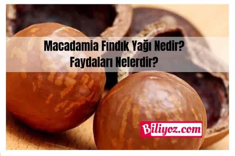 macadamia-yağı-faydaları