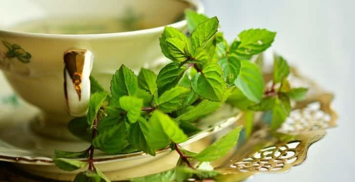Yaprak Yeşil Çay Nasıl Demlenir