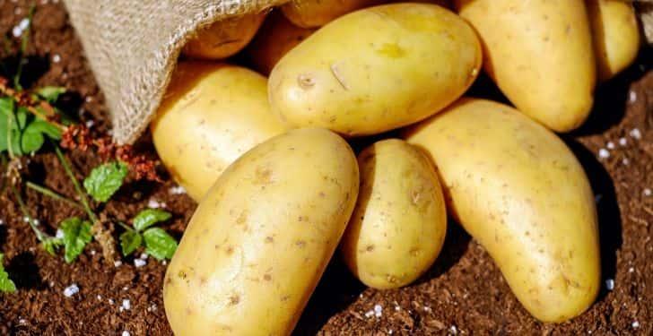 kol altı kararması için patates