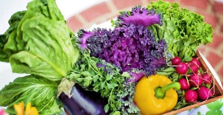 zeka gelişimi için sebze ve meyveler