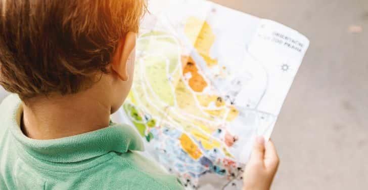 Çocukların beyin gücünü arttıran besinler