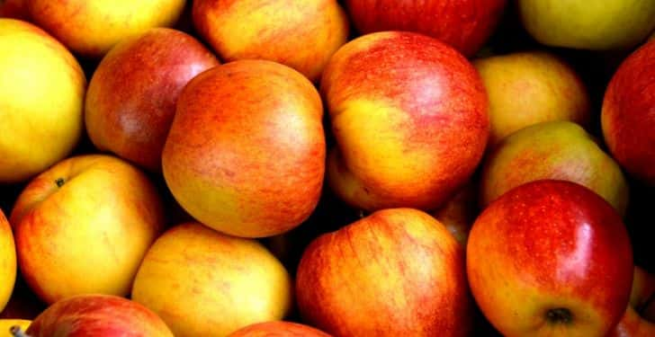 bilişsel gelişim için elma