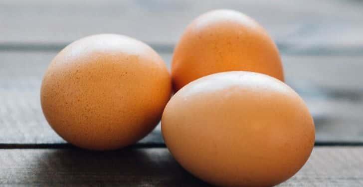 yumurta zeka geliştiriyor