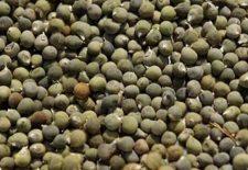 Bamya tohumu nasıl kullanılmalı